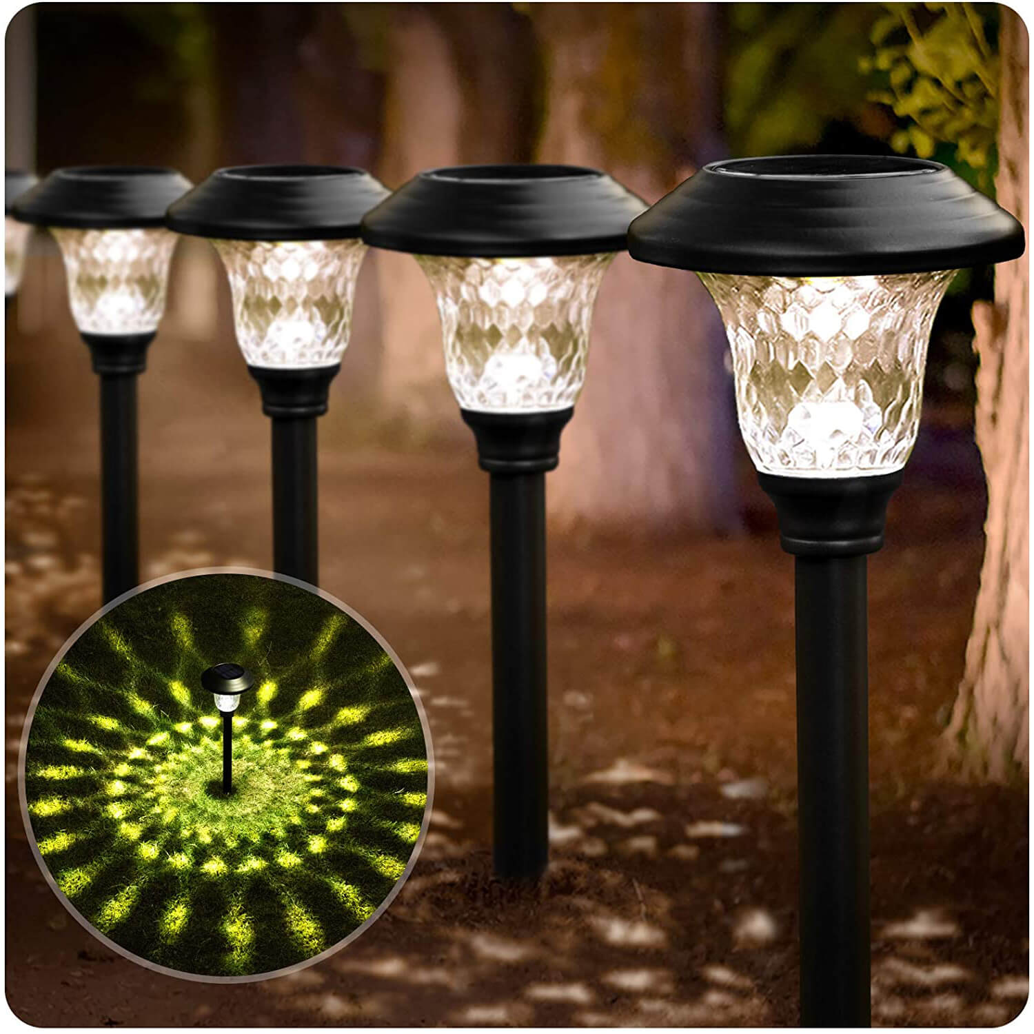 BEAU JARDIN Bright Pathway Solar Lights