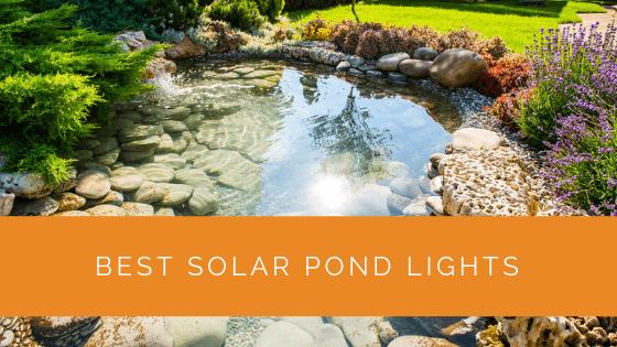 Best Solar Pond Lights